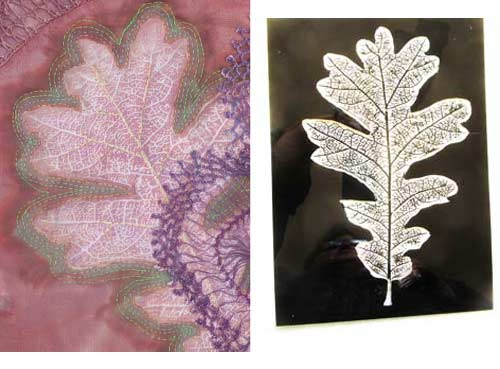 leaf-comp